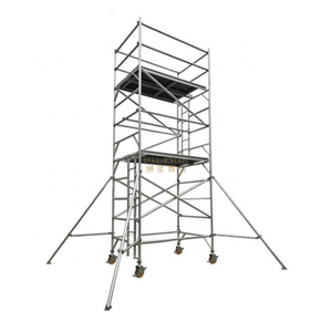 Portable Tower Double scaffolding with climbing ladder
