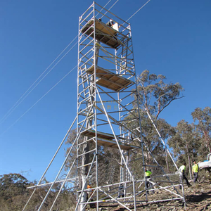 Portable Tower Double scaffolding with step ladder